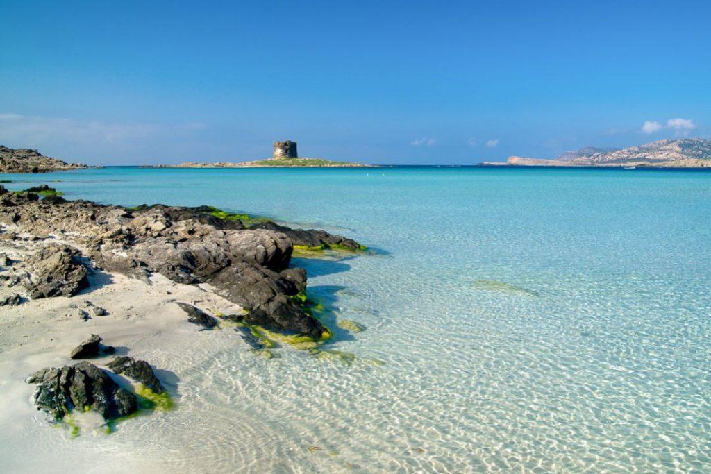 Gita in Catamarano all'asinara, Sardegna